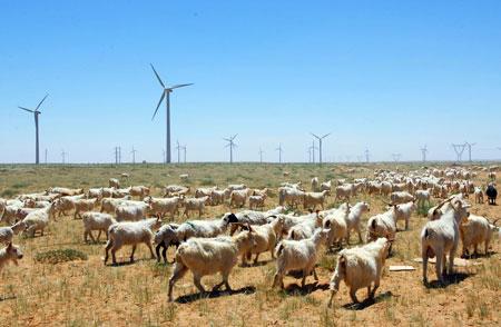 巴彦淖尔市风力发电发展迅速