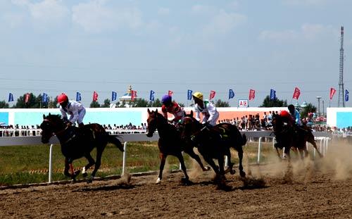 """内蒙古兴安盟代表队骑手王海和他所骑的赛马""""王子""""获得亚军,吉林代表"""