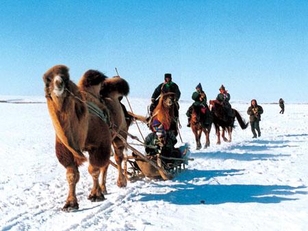 冬季可以进行的节庆活动_2009呼伦贝尔冬季旅游节庆活动2009呼伦贝尔