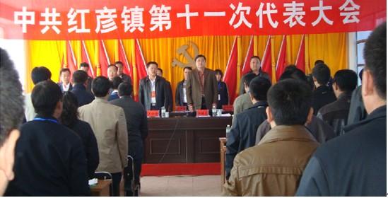红彦镇召开第十一次党代表大会
