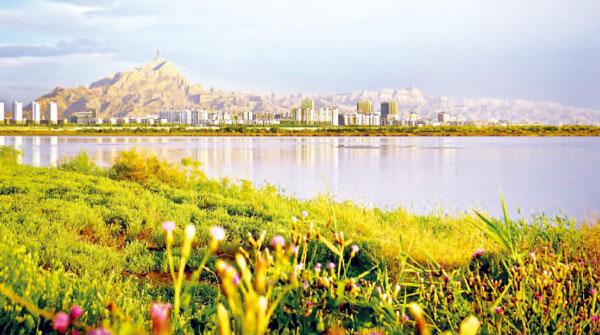 围绕黄河百里生态长廊的保护