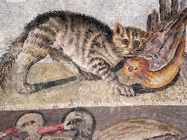 罗马时期马赛克画中的喵星人捕鸟图图片
