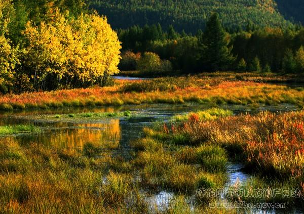 大兴安岭汗马国家级自然保护区被正式指定为世界生物