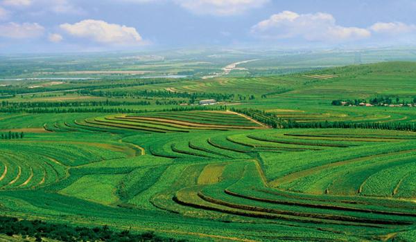 赤峰市敖汉旗生态建设推动美丽乡村建设图片