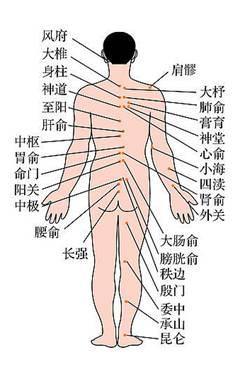 膏药是什么原理_颈椎膏药贴什么地方图