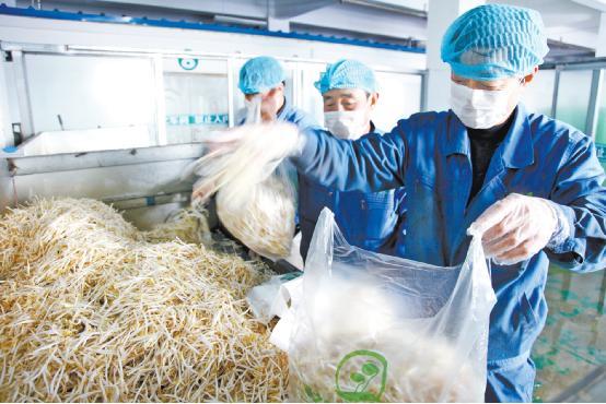 乌海市强化食品企业管理为了舌尖上的安全 - 乌