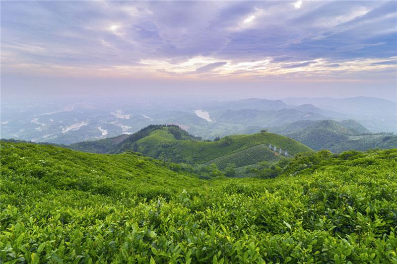 西九华山旅游风景区位于河南省固始县陈淋子镇境内,观赏面积120平方