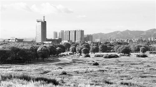 美丽的赛汗塔拉草原装点着包头市