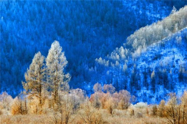 这世界上最美的事,不过是阿尔山下了雪.jpg