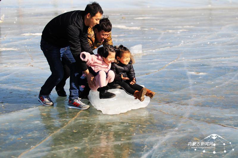 发现动物公园冰像