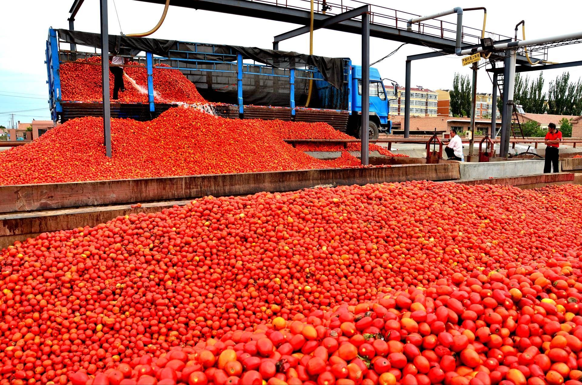 巴彦淖尔创建国家级设计食品农产品质量安全示范市苏州有出口大闸蟹礼券的吗图片