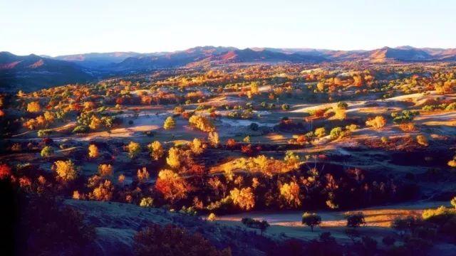 秋天风景彩画带颜色