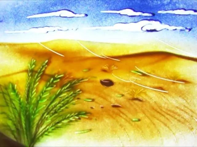 给你一粒种子如何染绿沙漠