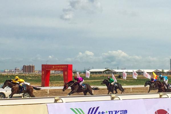 2018年北京马协速度赛马公开赛在锡林浩特举行
