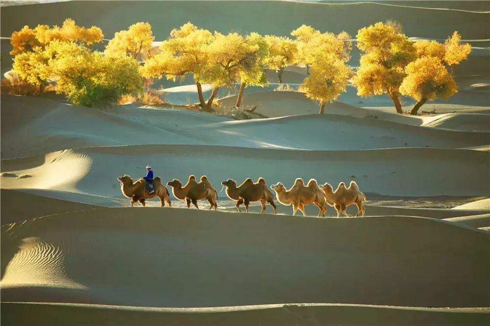古代仙境风景图片大全
