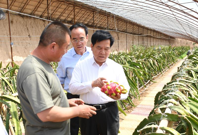 李纪恒:大力培育发展特色产业 推动脱贫攻坚促进乡村振兴