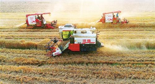 《【恒达在线登陆注册】全国大规模小麦跨区机收全面展开》