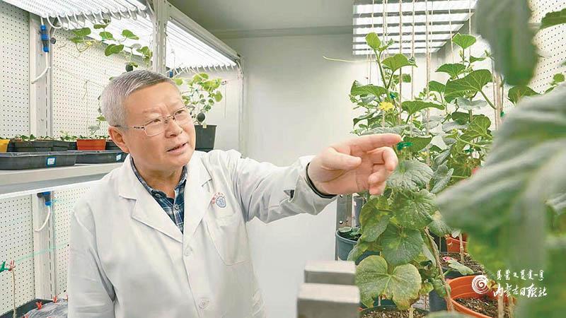 【创新实验室】自治区金宝搏188体育牧草与特色作物生物技术